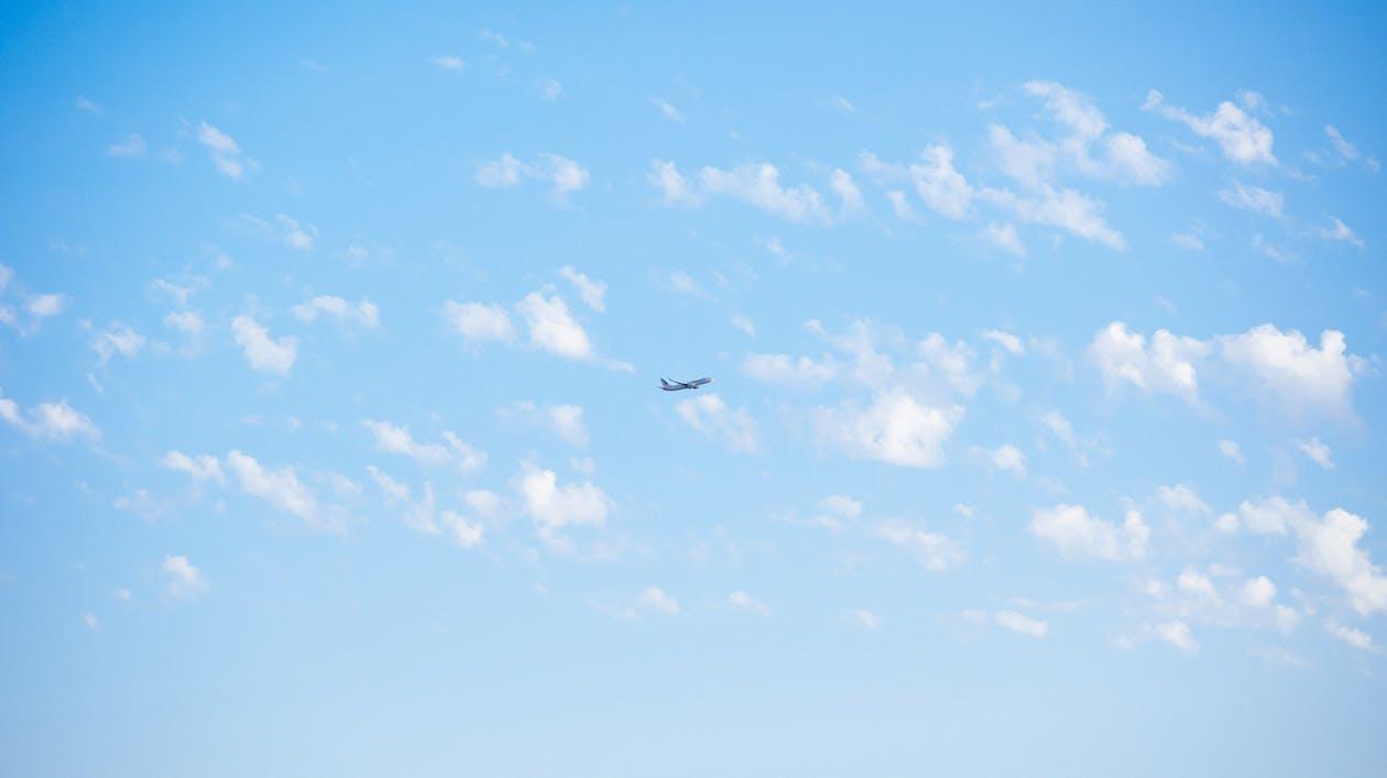 atmosfär, aviate, blå himmel