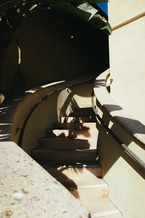 Безкоштовне стокове фото на тему «гвинтові сходи, Денне світло, кроки, поручні»