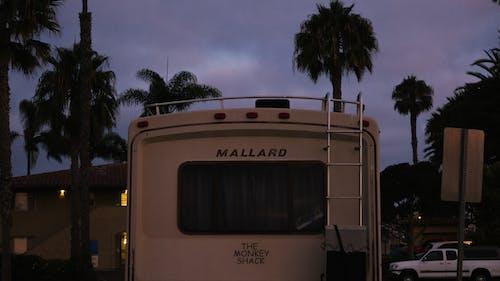 Foto stok gratis bis, di luar rumah, kendaraan, lampu