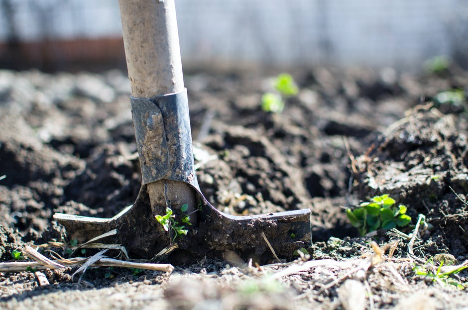 agriculture, digging