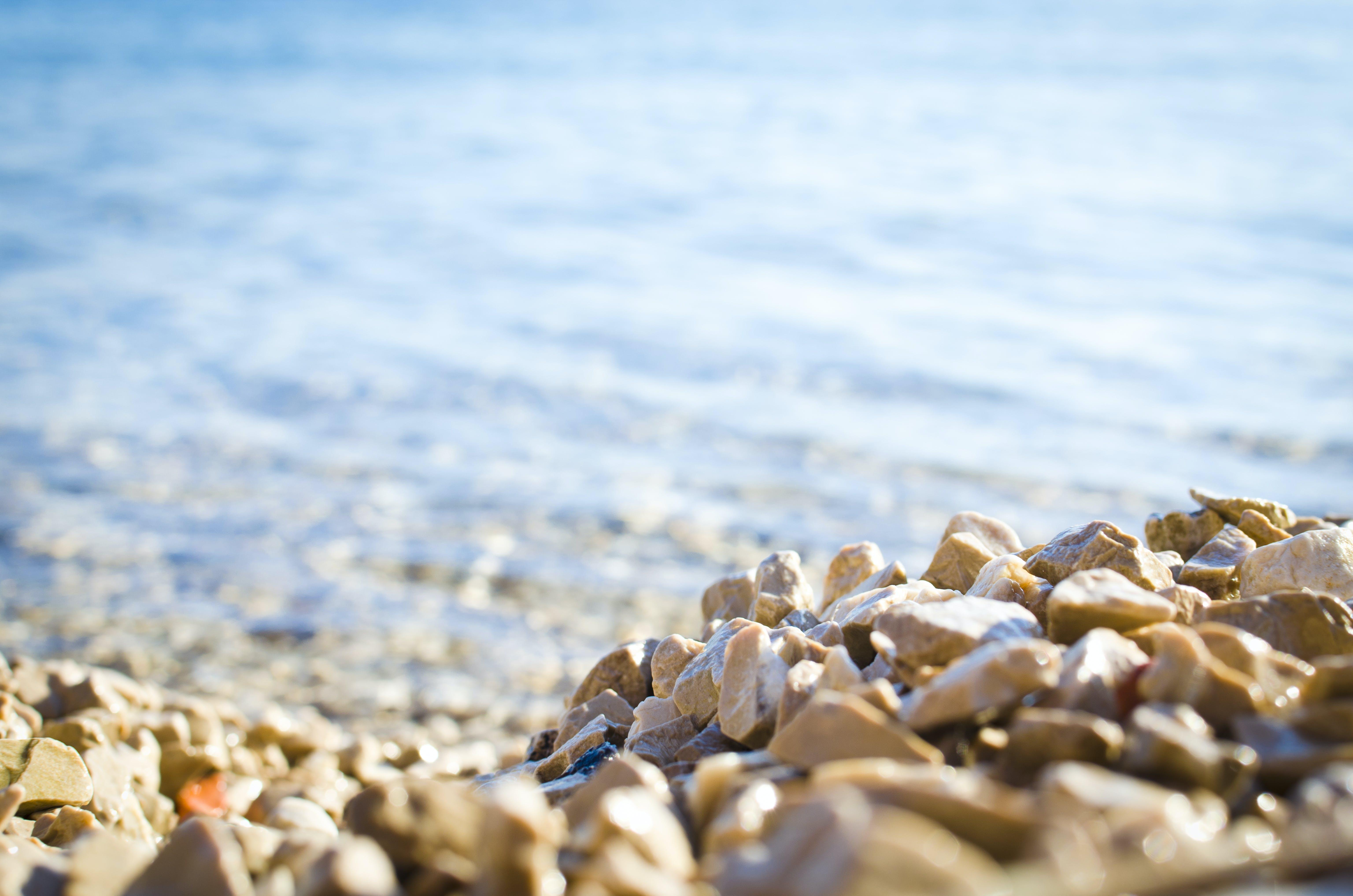 Kostnadsfri bild av oskärpa, sand, Sol, solig