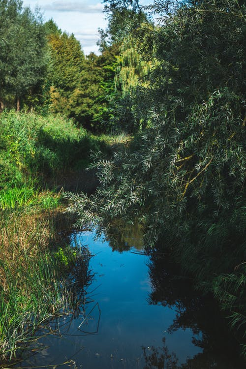Free stock photo of blue water, british countryside, country, countryside