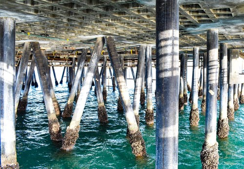 다리, 다리 아래, 물, 바다의 무료 스톡 사진