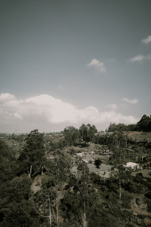 Ilmainen kuvapankkikuva tunnisteilla abstrakti kuva, älypuhelin, elämä, kaunis maisema