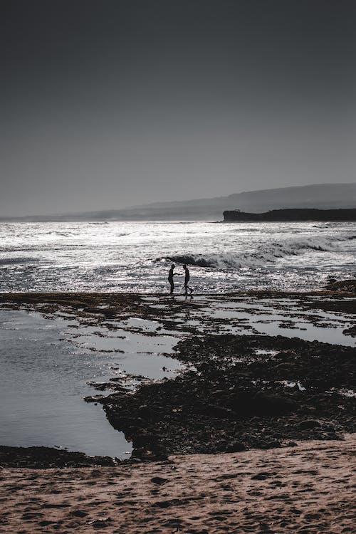 Ilmainen kuvapankkikuva tunnisteilla aalto, aasialaiset ihmiset, hiekkaranta, kalastaja