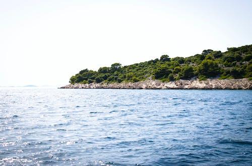 Foto profissional grátis de água, árvores, azul, beira-mar