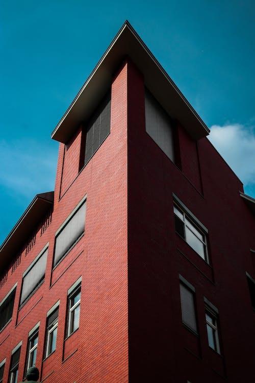 低角度拍攝, 低角度攝影, 外觀, 建造 的 免费素材照片