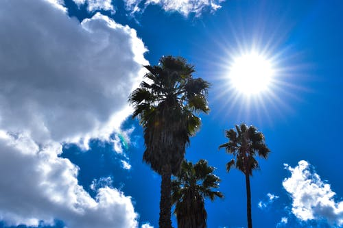 Free stock photo of afternoon, background, blue sky, california