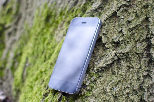 Free stock photo of iphone, smartphone, moss, technology