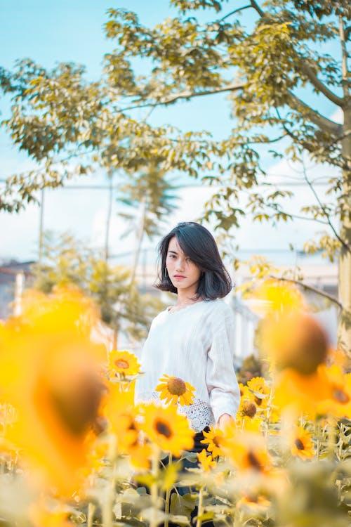 Женщина, стоящая возле подсолнухов