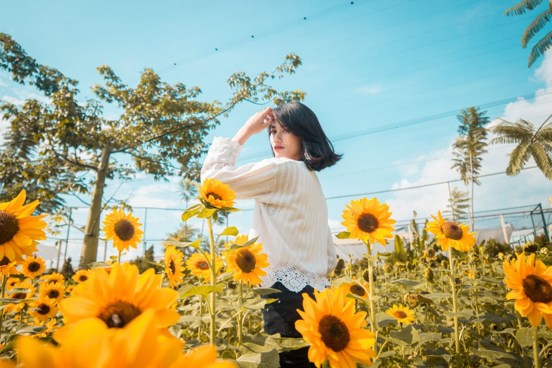 Woman Standing In The Middle Of A Sunflower Field