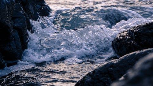 dalga, dalgalar, deniz, hareket içeren Ücretsiz stok fotoğraf