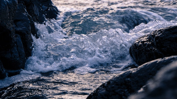 Free stock photo of cold, sea, beach, water