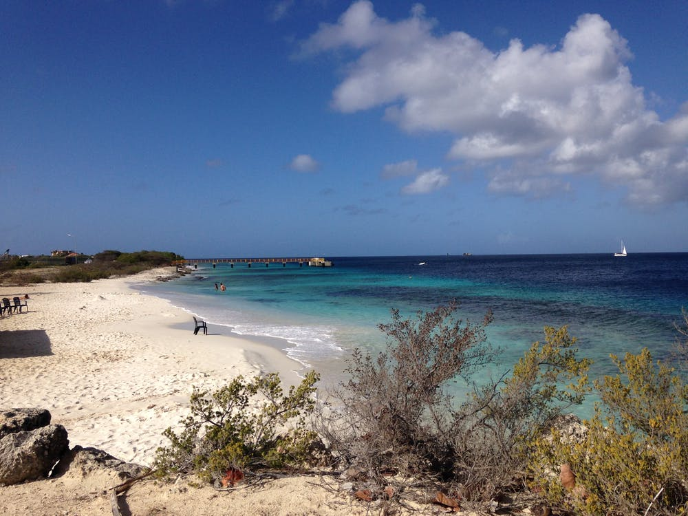 Free stock photo of Bonaire