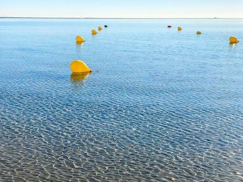 berrak su, deniz, örgüleri, şamandıra içeren Ücretsiz stok fotoğraf