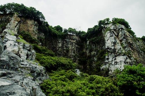moutains, 綠色, 自然 的 免費圖庫相片