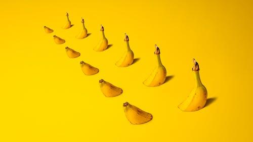 건강한, 노란색, 노란색 배경, 바나나의 무료 스톡 사진