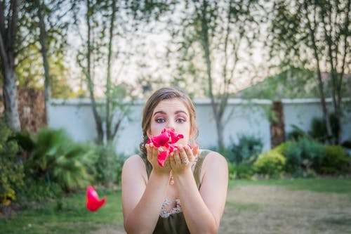Ảnh lưu trữ miễn phí về cánh hoa, cánh hoa hồng, chụp ảnh, con gái