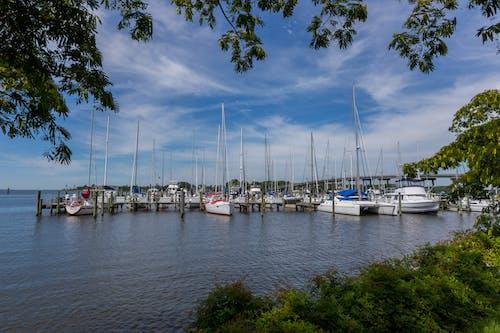 Foto d'estoc gratuïta de barca, barques, moll, oriental