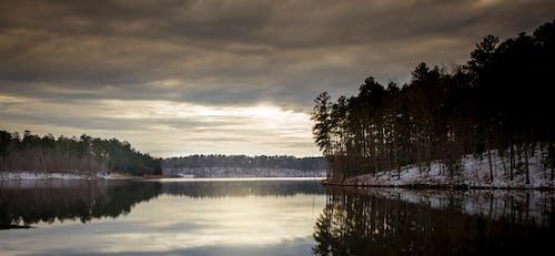 Foto d'estoc gratuïta de aigua, capvespre, constipat, hivern