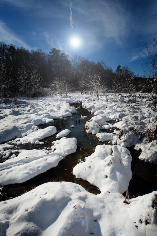 Foto d'estoc gratuïta de corrent, hivern, neu, paisatge