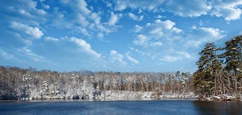 Foto d'estoc gratuïta de hivern, llac, neu, paisatge