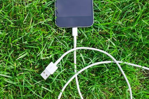 Fotos de stock gratuitas de blanco, cable, césped, conexión