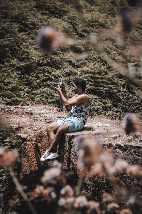 คลังภาพถ่ายฟรี ของ ความงามในธรรมชาติ, ช่างภาพ, ชีวิตธรรมชาติ, มีความสุข