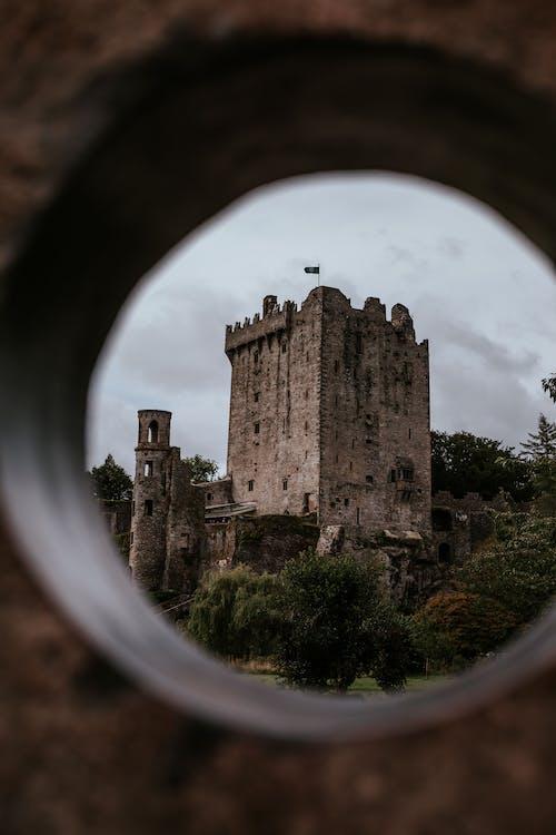 Blarney Castle Near Forest