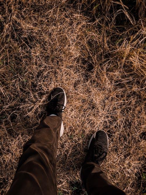 Imagine de stoc gratuită din mers pe jos, singur