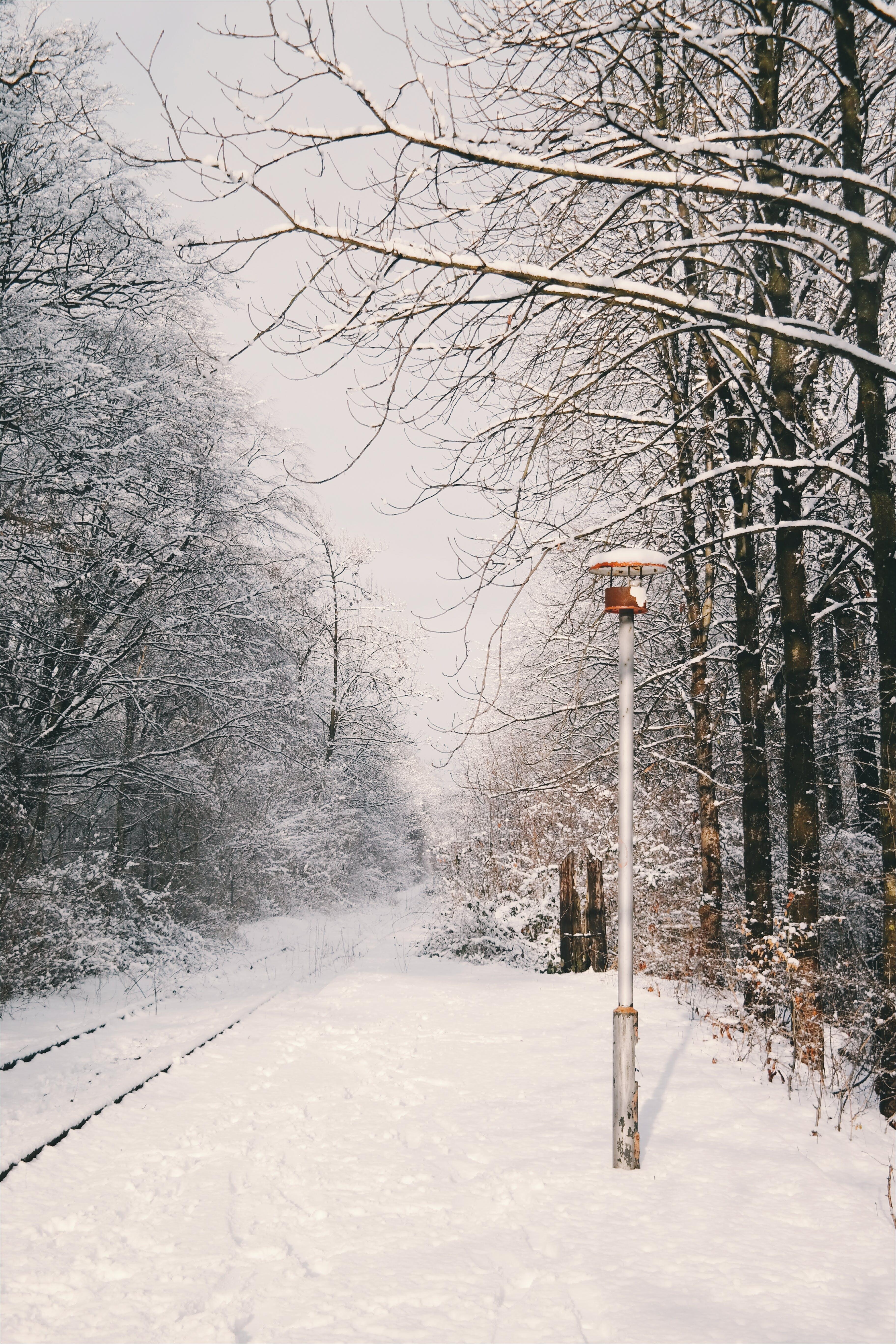 Kostenloses Stock Foto zu bahnhof, draussen, kalt, lampe