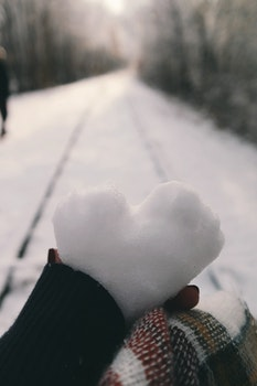 Free stock photo of cold, snow, love, heart