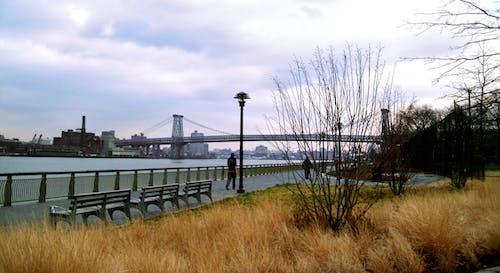Kostnadsfri bild av bro, New York