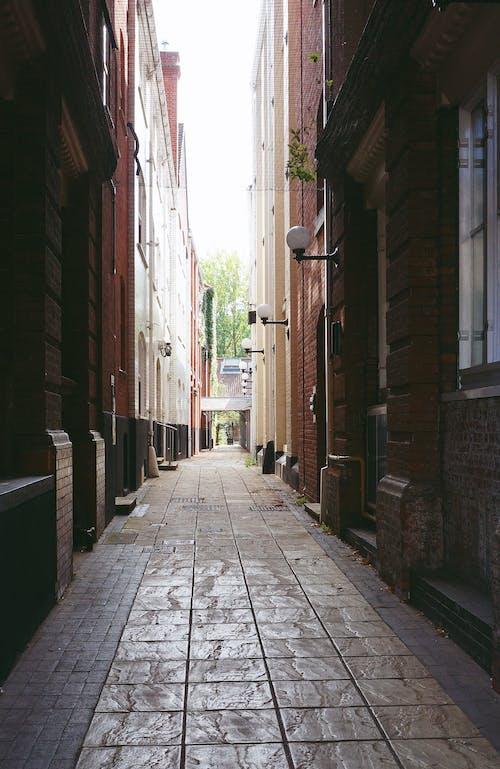 Fotos de stock gratuitas de calle, callejón, calles, camino