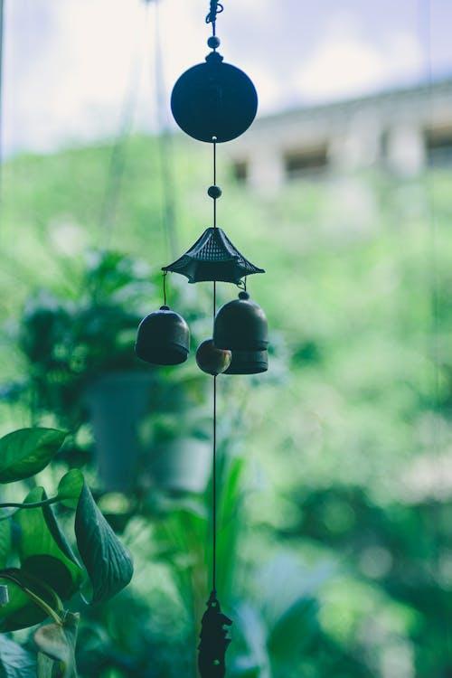 Бесплатное стоковое фото с ветер куранты, дверной звонок, лозы, мирный