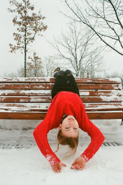 Kostenloses Stock Foto zu bank, bäume, draußen, einfrieren