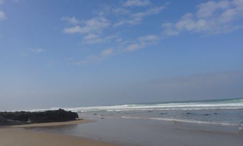 Free stock photo of beach, surf