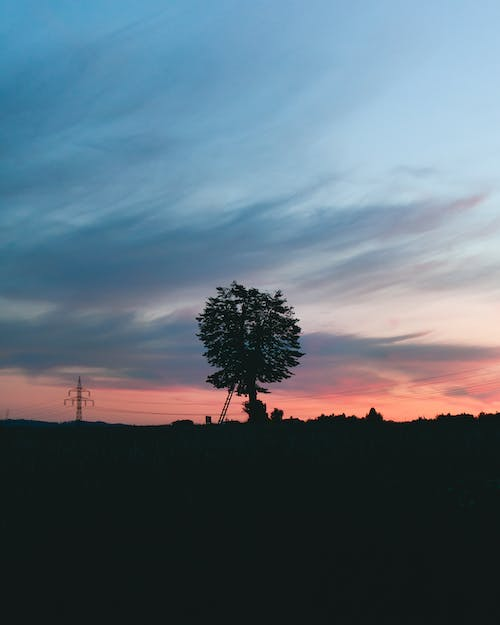Free stock photo of Beautiful sunset, contrast, red sky, sunset