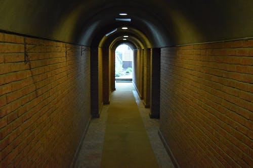 Free stock photo of 4k wallpaper, Absi, brick, chemin
