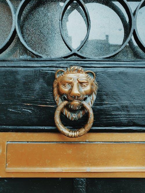 Lion Door Knocker Close-up Photography