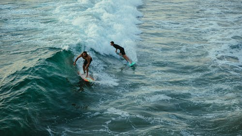 Surfers on Wave