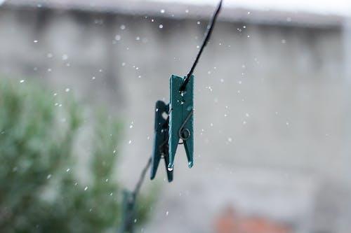 水滴, 滴, 胸针, 雨 的 免费素材照片