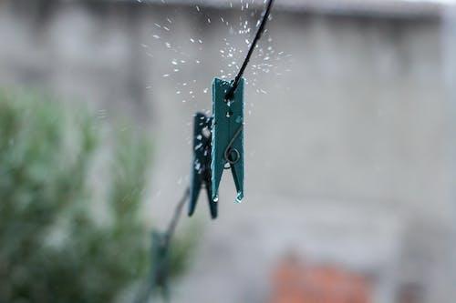 水滴, 滴, 胸针 的 免费素材照片