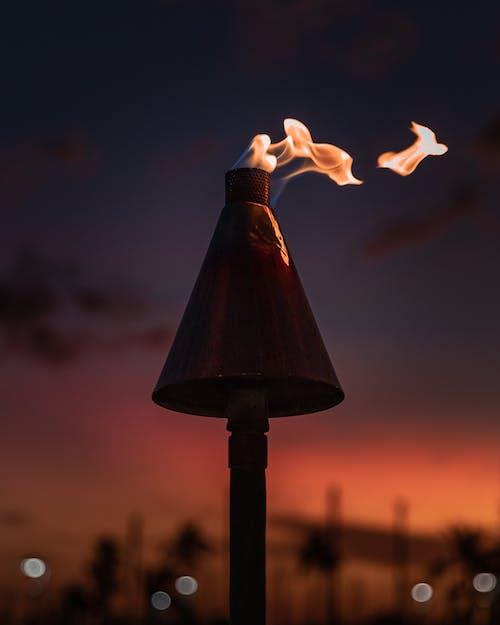 불, 불꽃, 새벽, 손전등의 무료 스톡 사진