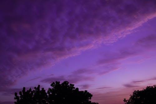Photos gratuites de couleur ciel