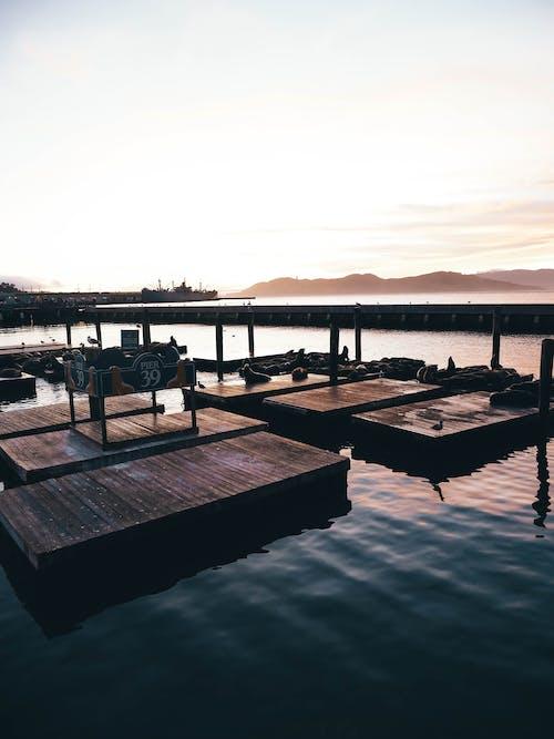 Δωρεάν στοκ φωτογραφιών με γνέφω, γραφικός, θάλασσα, νερό