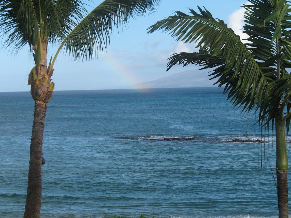 Free stock photo of ocean, rainbow