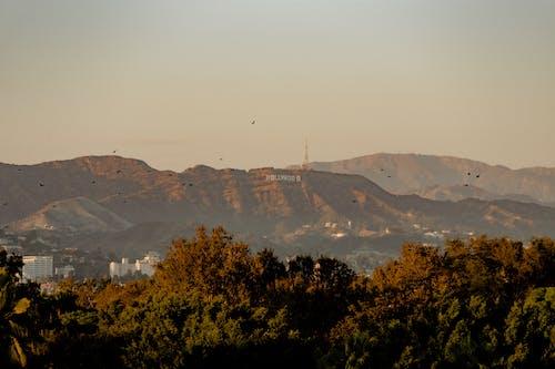 Безкоштовне стокове фото на тему «гори, дерева, Захід сонця, золота година»