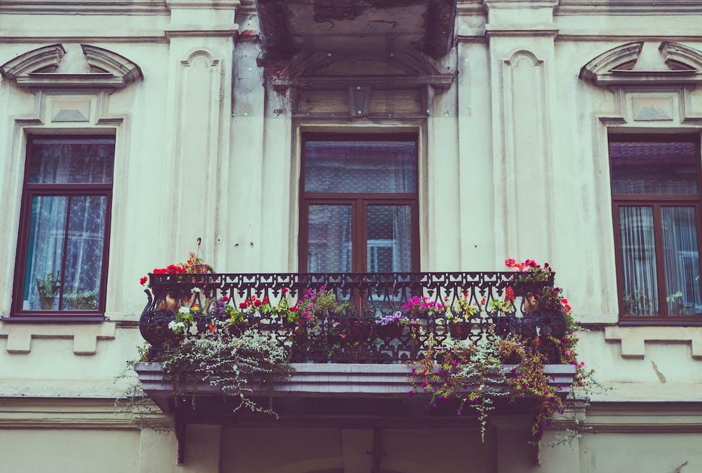 Çit üzerinde Çiçekler