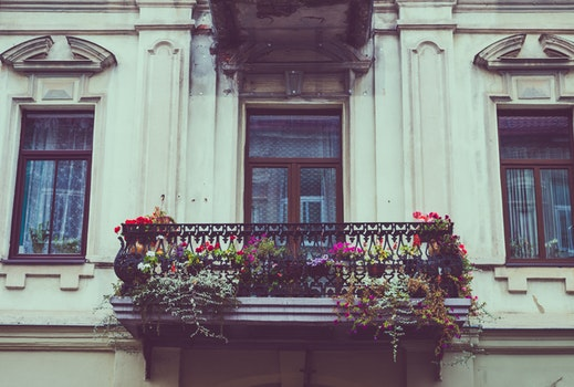 Free stock photo of building, vintage, architecture, windows